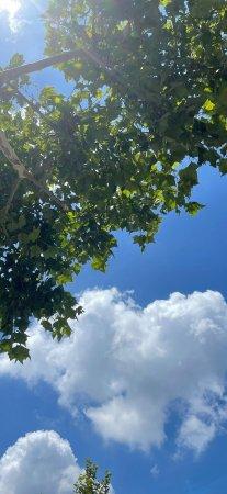 蓝天白云风景手机壁纸老