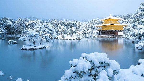 冬季可爱自然风光美景电