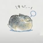 超可爱小兔呆萌图片 手绘的非常逼真