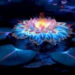 创意个性风景头像 炫酷创意花卉设计